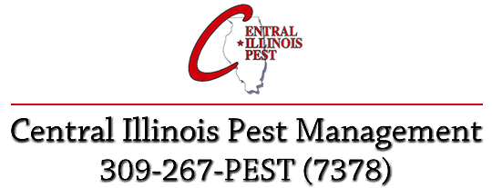 Central Illinois Pest Management - Pest control in and around Peoria - Telephone 309 267 7378